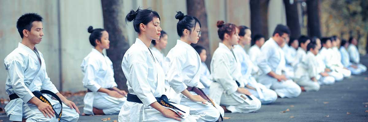 Comment choisir son karategi ?