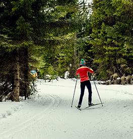La bonne paire de ski de fond